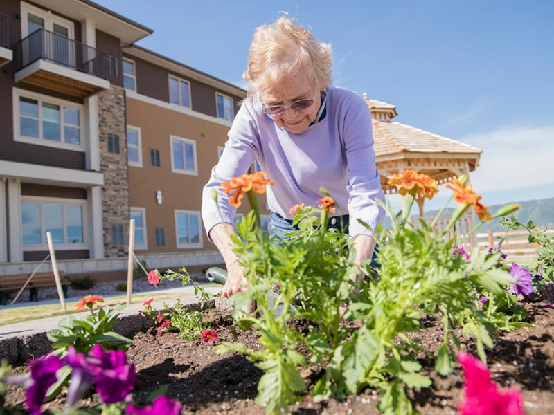 Gardening Provides a Healthy Pastime for Senior Green Thumbs